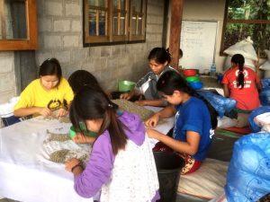 Zemědělské inovace a technologie v Barmě/Myanmaru s důrazem na pěstování kávy – Myanmar-CZ Joint Venture