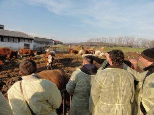 Studijní pobyt bosenských farmářů v České republice