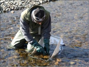 odebirani-vzorku-vody-z-reky-tuul