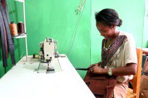 Projekt Zvýšení zaměstnanosti mladých žen a mužů v kožedělném sektoru prostřednictvím zkvalitnění odborného vzdělávání a podpory podnikání v SNNPR, Etiopie, 2016 – 2017